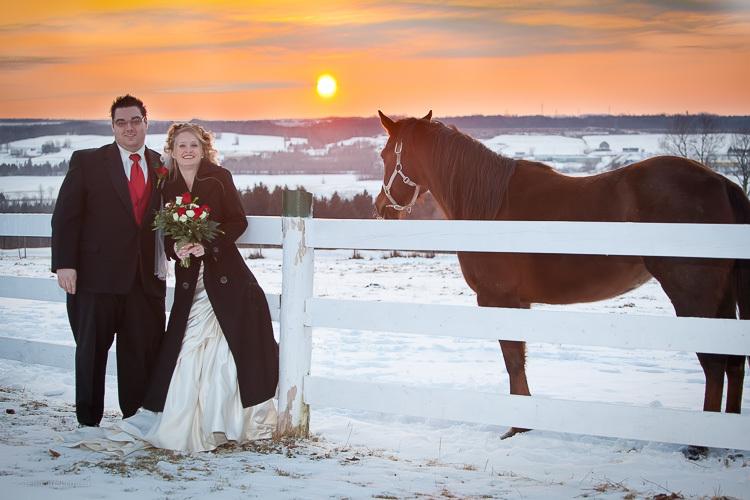 Sunset coucher de soleil horse cheval snow neige winter - Coucher de soleil montreal ...